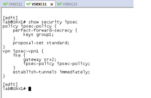 current_ipsec_vpn_policy