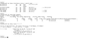 1_verify_bgp_routing