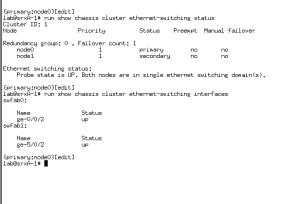 4_srx__ethestchng_outputs