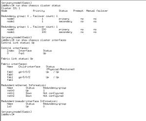 srx1_2 outputs